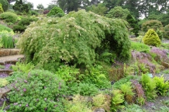 normal_Wisley_Gardens_03